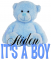 It's a Boy bear - Aiden