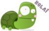 Turtle - Hola