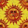 suncanvas